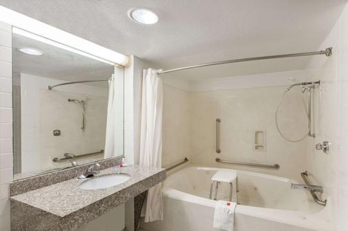 Days Inn and Suites Webster NASA-Clear Lake-Houston - Webster - Bathroom