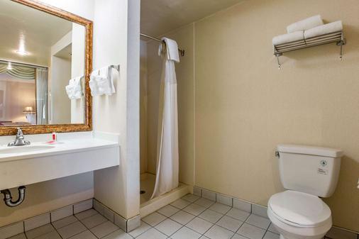 Econo Lodge Inn & Suites - Riverside - Kylpyhuone
