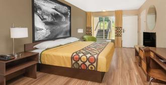 Super 8 by Wyndham Asheville Airport - Fletcher - Bedroom