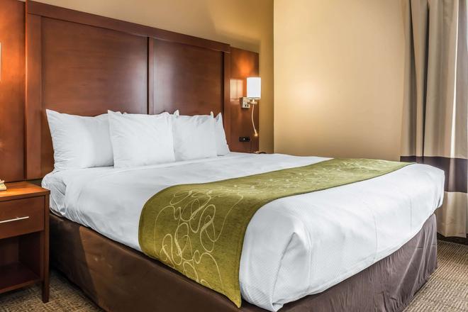 Comfort Suites - Springfield - Makuuhuone