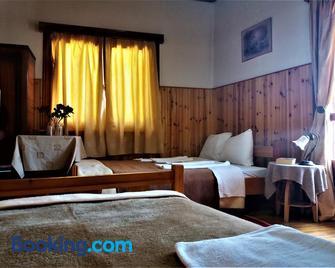 Hotel Acropolis Metsovo - Metsovo - Bedroom