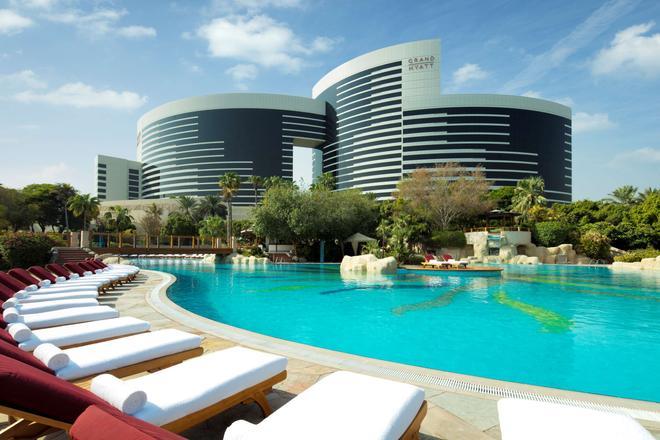 杜拜君悅酒店 - 杜拜 - 杜拜 - 游泳池