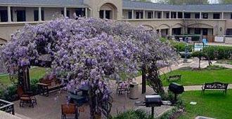 Vineyard Court Designer Suites Hotel - College Station