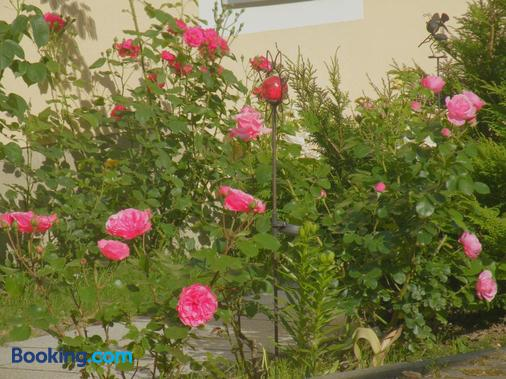 Am Lindenbaum - Sebnitz - Outdoors view