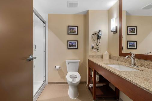 Comfort Suites Denver near Anschutz Medical Campus - Aurora - Bathroom