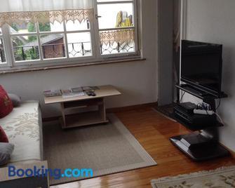 Panoramaapartement Sonnenlicht - Diez - Living room