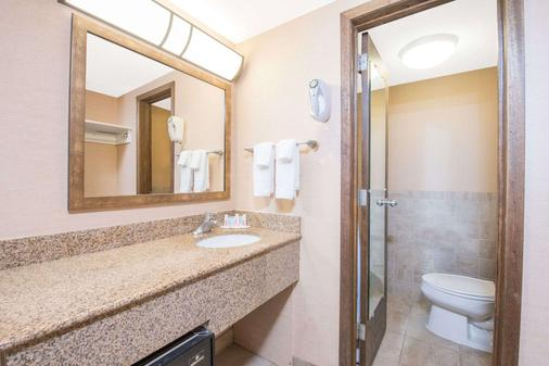 Days Inn by Wyndham Duluth Lakewalk - Duluth - Bathroom