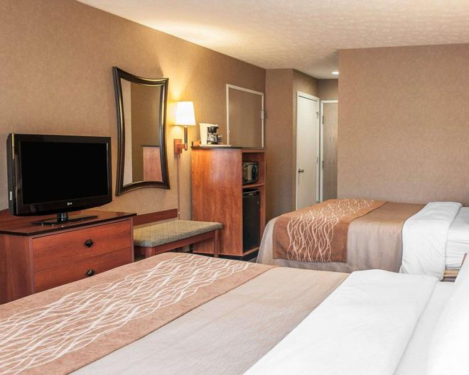 Comfort Inn Near Indiana Premium Outlets - Edinburgh - Bedroom
