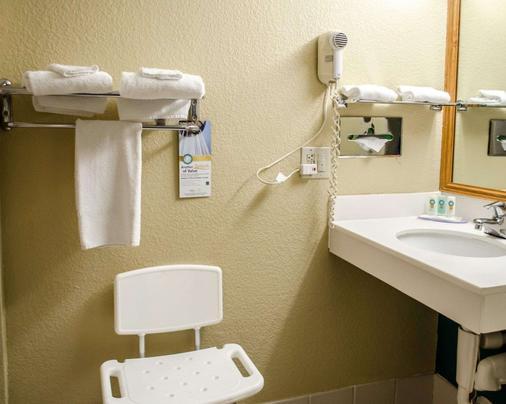 Quality Inn & Suites Medina- Akron West - Medina - Bathroom