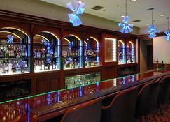 Rembrandt Hotel Atsugi - Atsugi - Bar