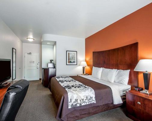 勞頓斯利普套房酒店 - 洛頓 - Lawton - 臥室