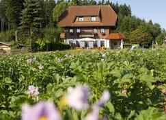 Gasthaus Schweizerhof - Titisee-Neustadt - Building