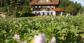 Gasthaus Schweizerhof - Titisee-Neustadt