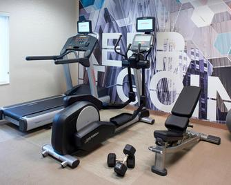 Springhill Suites By Marriott Frankenmuth - Frankenmuth - Gym