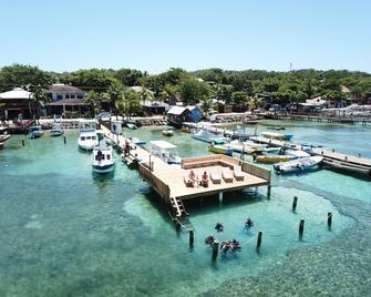 Splash Inn Dive Resort - West End - Außenansicht