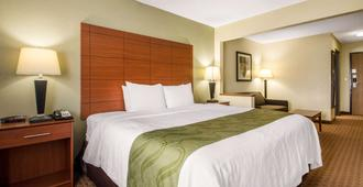 Quality Inn & Suites - Wisconsin Dells - Chambre