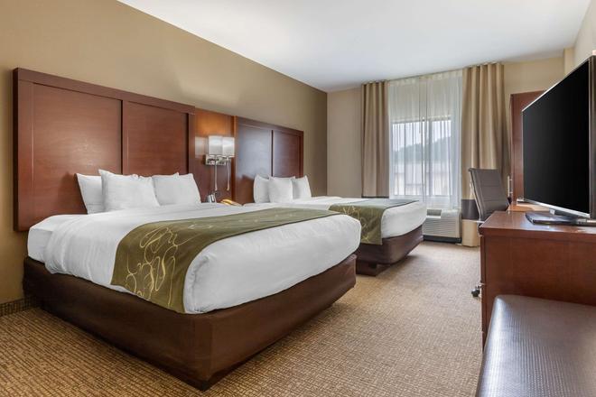 Comfort Suites - Johnson City - Chambre