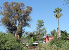 Gumtree Guest House - Oudtshoorn - Cảnh ngoài trời