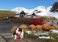 Norður-Vík - Vik