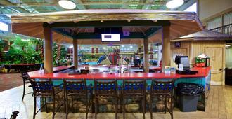 Holiday Inn Fargo - פארגו - בר