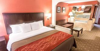 Comfort Inn Pittsburgh - Pittsburgh - Camera da letto
