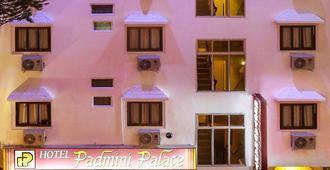 Hotel Padmini Palace - Udaipur