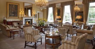 梅瑞恩酒店 - 都柏林 - 都柏林 - 休閒室