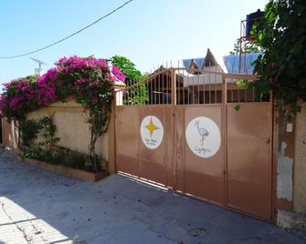 Star House - Port Au Prince - Outdoors view