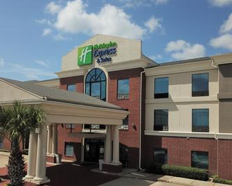 Holiday Inn Express & Suites Hearne - Hearne - Building