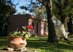 堂薩爾瓦多旅館 - 聖安東尼奧馬刺日阿雷科 - 聖安東尼奧阿雷科 - 室外景