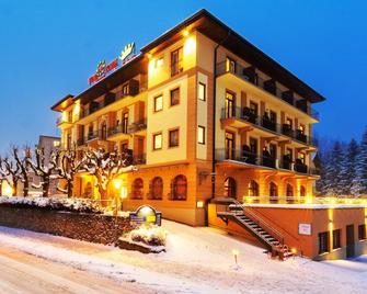 Euro Youth Hotel & Krone - Bad Gastein - Κτίριο