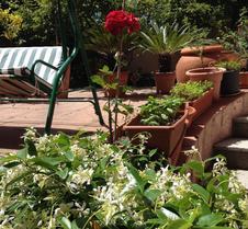 西羅早餐加住宿酒店 - 歐比亞