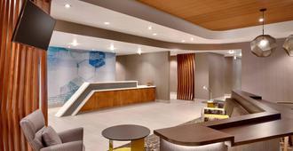 SpringHill Suites by Marriott Idaho Falls - איידהו פולס - דלפק קבלה