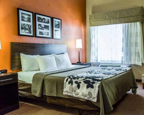 Sleep Inn and Suites Lakeland I-4 - Lakeland - Bedroom