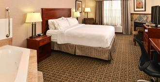 Holiday Inn Express Hotel & Suites Edmonton North, An IHG Hotel - Edmonton - Habitación