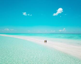 Kokaa Maafushi - Маафуші - Beach
