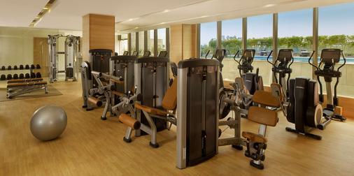 Hyatt Regency Chandigarh - Chandigarh - Γυμναστήριο