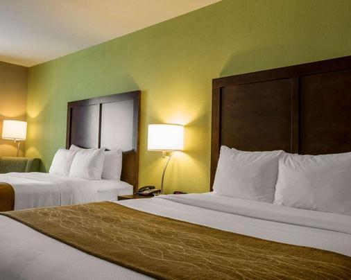 Comfort Inn Sylva - Cullowhee - Dillsboro - Bedroom
