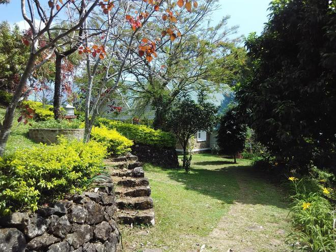 Ambady Estate - Munnar - Cảnh ngoài trời