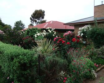 Admurraya House Bed & Breakfast - Rutherglen - Outdoors view