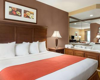 Country Inn & Suites by Radisson, Cuyahoga Falls - Cuyahoga Falls - Ložnice