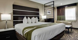 Quality Inn & Suites Athens University Area - Athens - Chambre