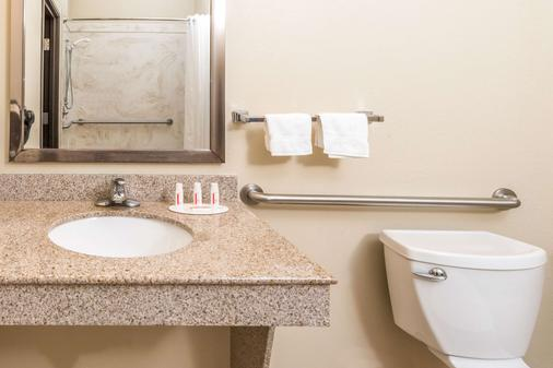 Ramada by Wyndham College Station - College Station - Bathroom