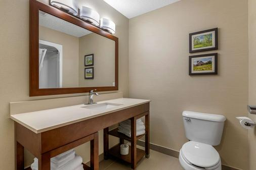 Comfort Suites - Cedar Falls - Bathroom