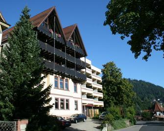 Hotel Bergfrieden - Bad Wildbad - Building