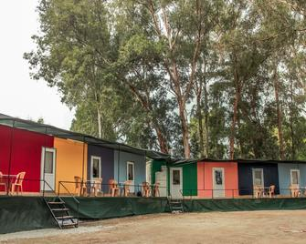 Patara Woody Hostel & Camping - Gelemiş - Edificio