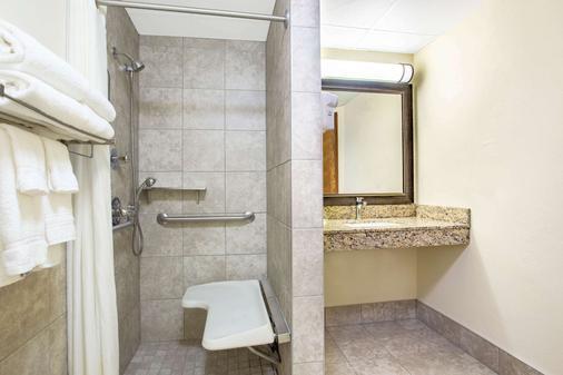 AmericInn by Wyndham Green Bay West - Vịnh Xanh (Green Bay) - Phòng tắm