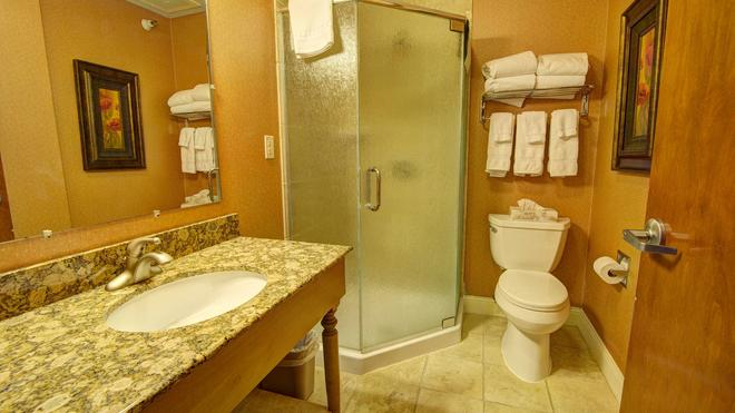 Fairfield Inn and Suites by Marriott Rapid City - Rapid City - Bathroom