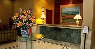 Pedregal Palace - Mexico City - Front desk