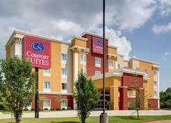 Comfort Suites - Denham Springs - Building